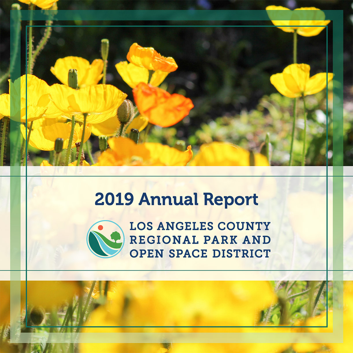 Image of the 2019 annual report cover page.