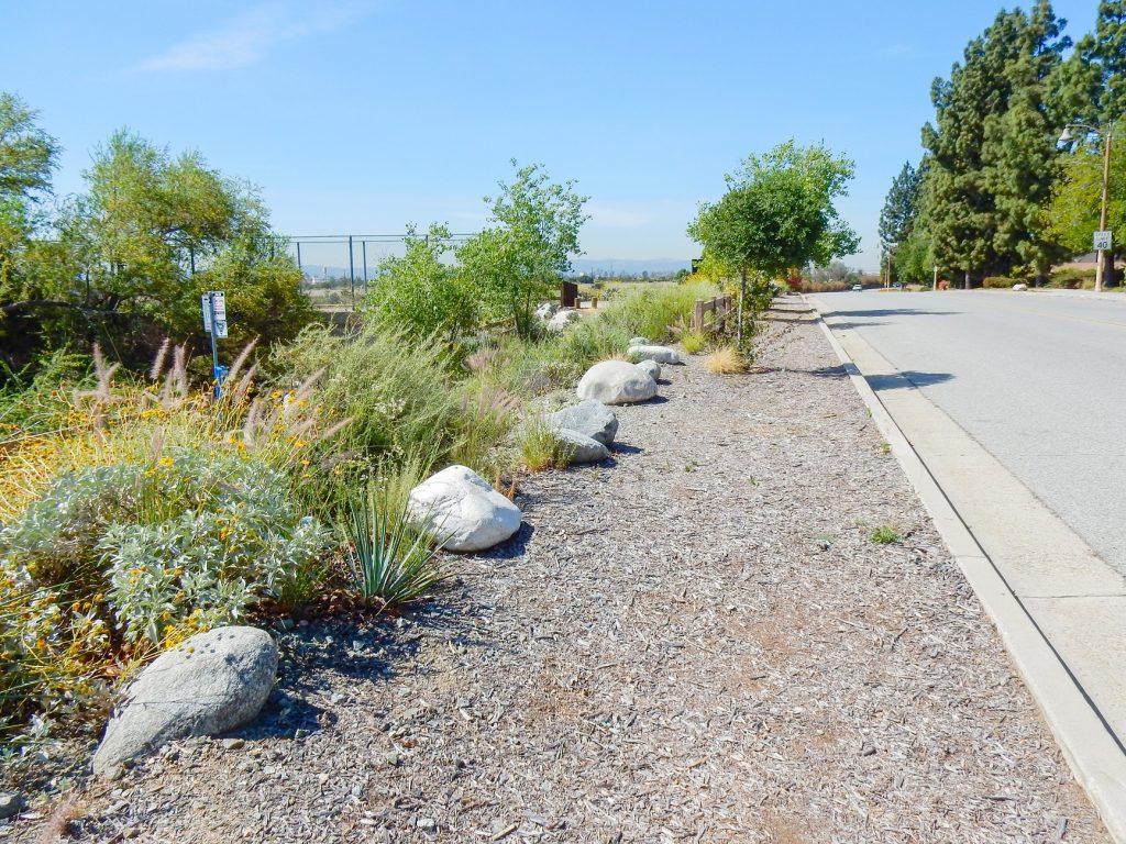 Image of Encanto Park Nature Walk trail cement walk way
