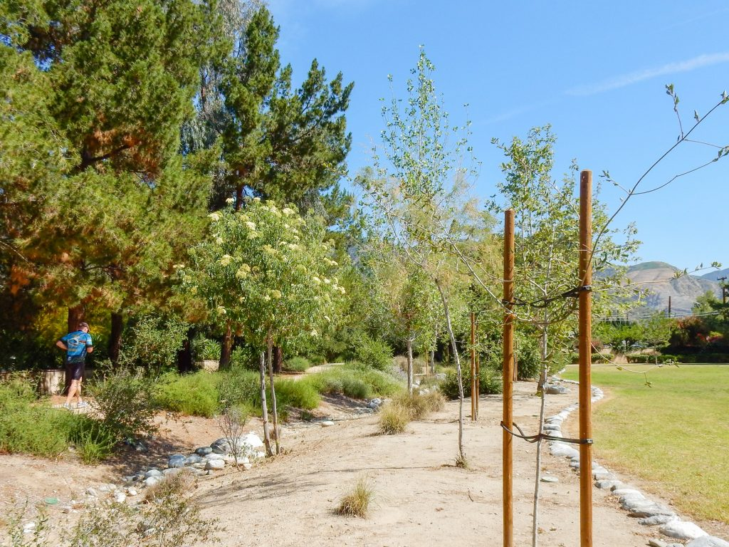 Image of Encanto Park Nature Walk trail garden