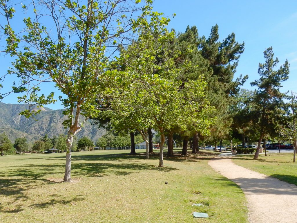 Image of Encanto Park Nature Walk trail