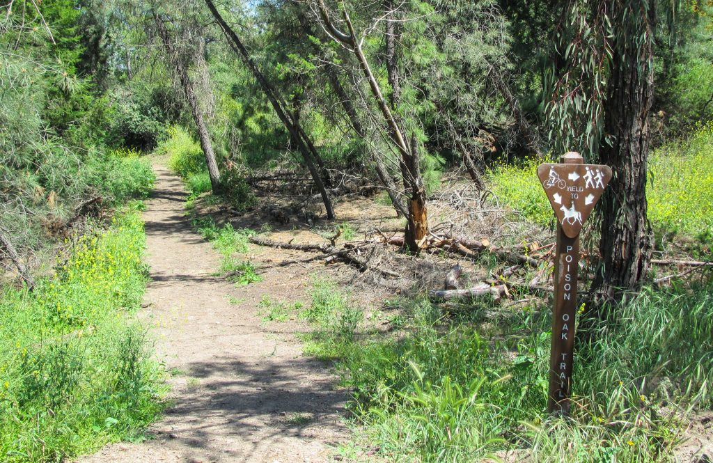 Picture of the trail at Horsethief Canyon.
